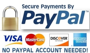 PayPal secure icon